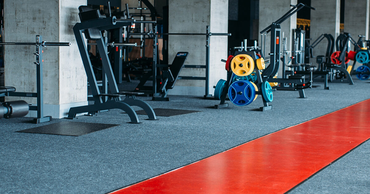 Gym Accessories India: That is What Professionals Do